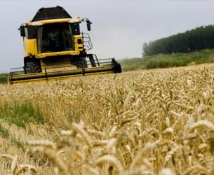Liberbank refuerza su estructura para prestar mayor atención al sector agroganadero