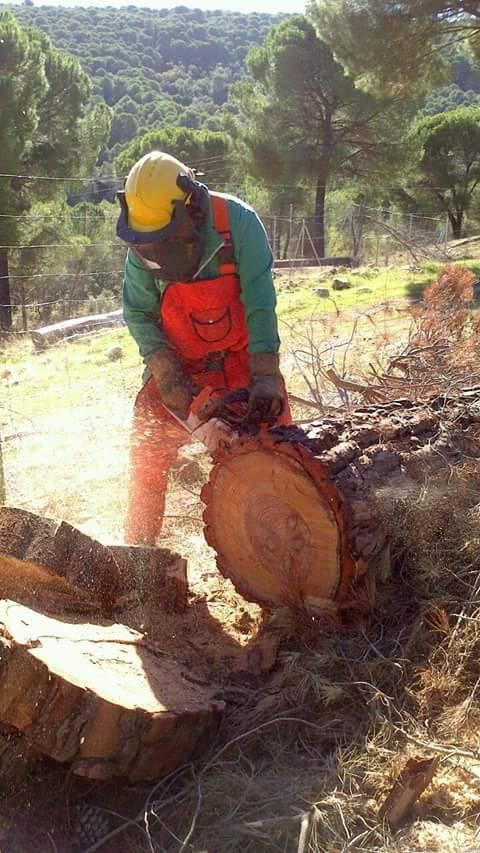 Los bomberos forestales mejoran sus capacidades para desarrollar sus funciones en Herrera del Duque